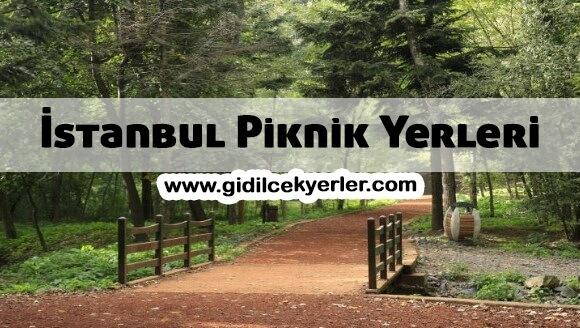 İstanbul Piknik Yerleri (En İyi 6 Yer)