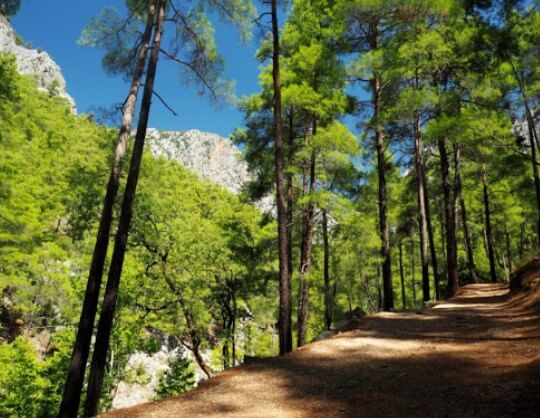 Kovada Gölü Milli Parkı